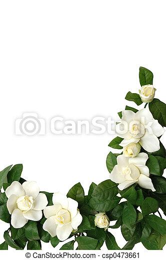 Magnolia Border - csp0473661