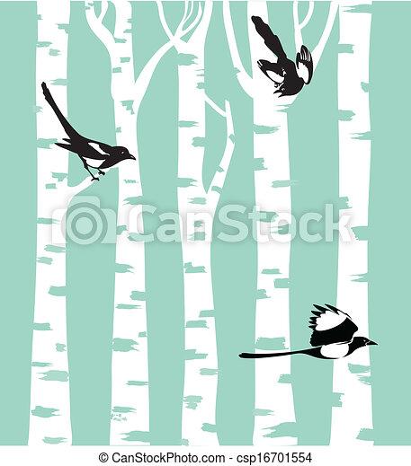Magpies - csp16701554