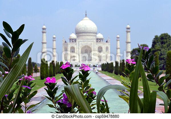 Taj Mahal - csp59478880