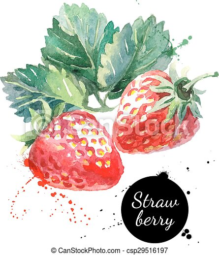 main, aquarelle, fraise, fond, dessiné, blanc, peinture - csp29516197