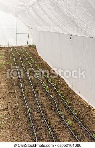 Maison irrigation vert syst me vert irrigation house syst me - Lavage tapis maison ...