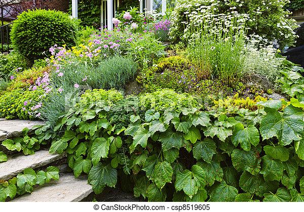 maison, luxuriant, jardin - csp8519605