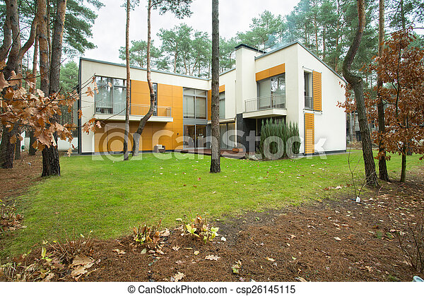 maison, moderne, jardin