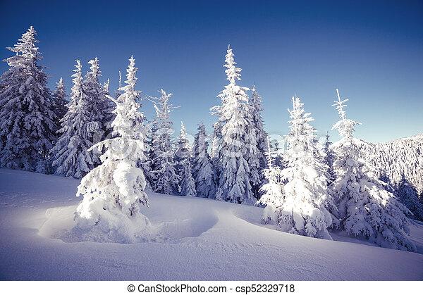Majestic winter landscape - csp52329718