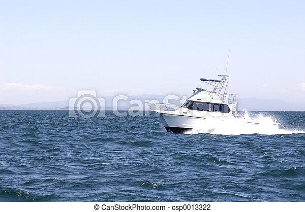 Makaira out to sea - csp0013322