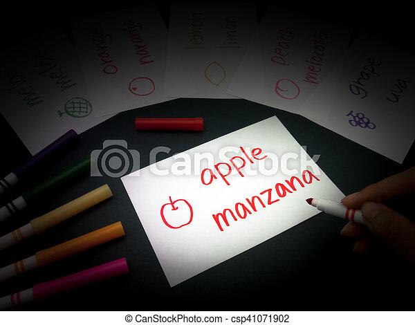 Making Language Flash Cards; Spanish - csp41071902