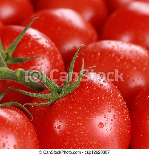 Macro-Foto von frischen Tomaten - csp12620387