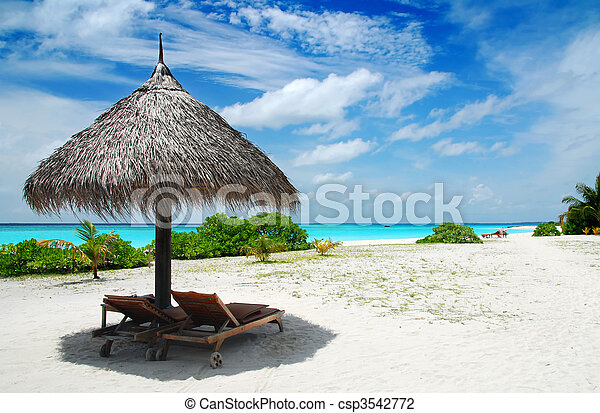 Relájate en las maldivas - csp3542772