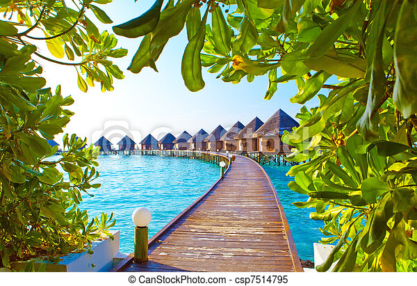 maldives., kupy, willa, woda - csp7514795