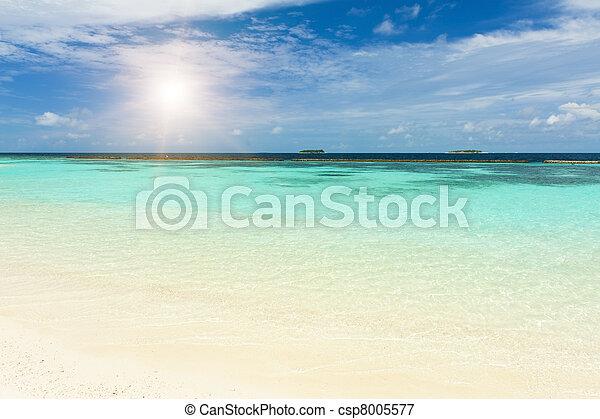 maldives, mar - csp8005577