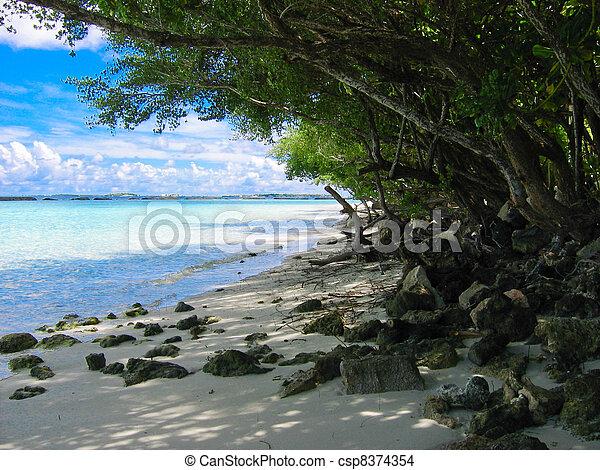 Maldives - csp8374354