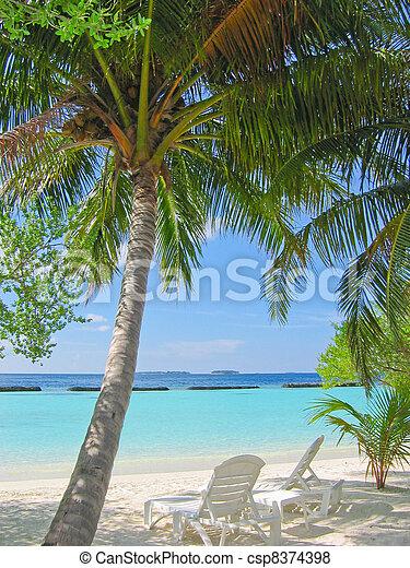 Maldivian beach - csp8374398