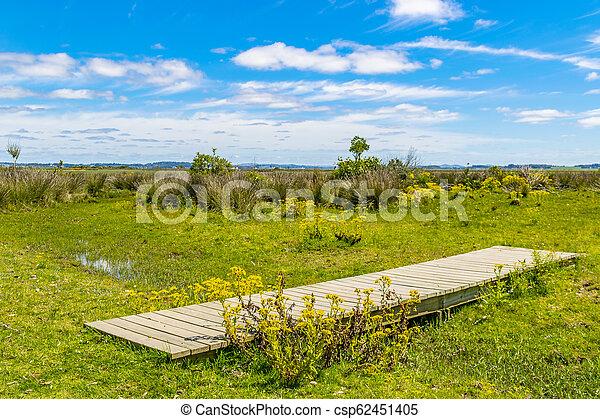 maldonado, 公園, 固有, ウルグアイ, 部門 - csp62451405