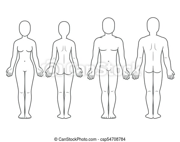 Male and female body front and back view. blank human body template ...