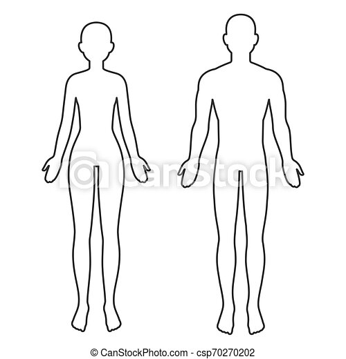 Male And Female Body Outline Male And Female Body Silhouette Outline Blank Anatomy Template For Medical Infographics Canstock Muscular man front and back in silhouette, line and color. https www canstockphoto com male and female body outline 70270202 html