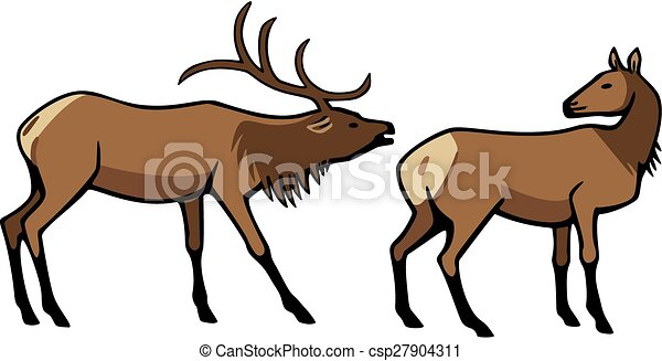male and female elk vector illustration two elk a male with rh canstockphoto com elk clip art in black and white elk clip art free