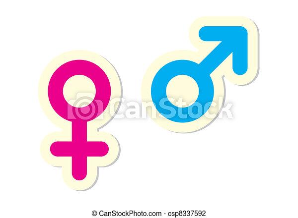 Male And Female Symbols On White Background Vector Illustration