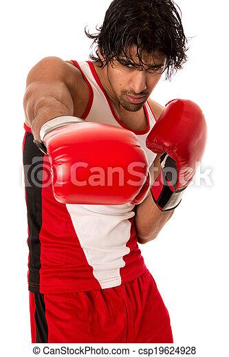 Male Boxer - csp19624928