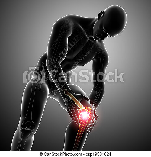 Male knee pain anatomy on gray  - csp19501624