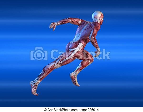 male sprinter - csp4236014