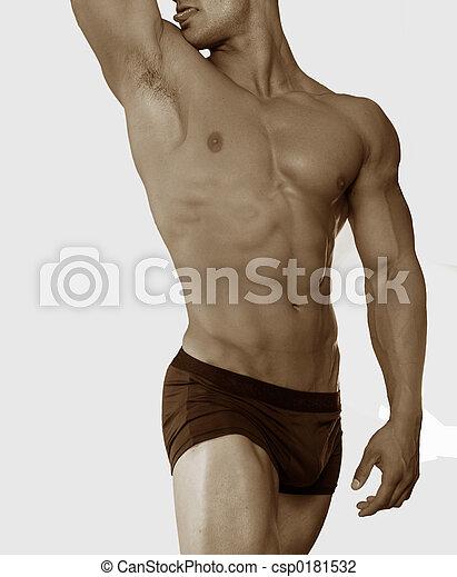 male torso - csp0181532