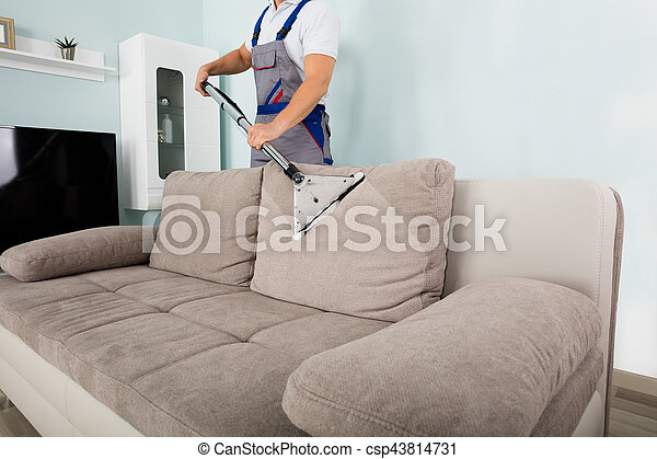 Male Worker Cleaning Sofa With Vacuum Cleaner   Csp43814731