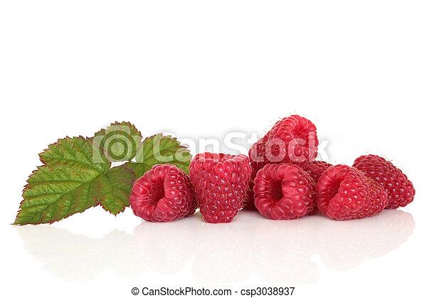 malina, owoc - csp3038937
