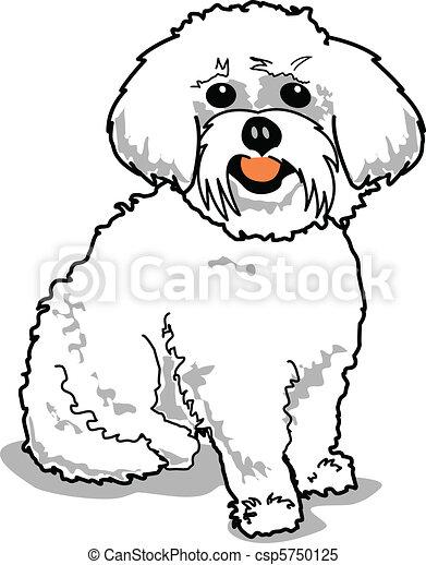 maltese dog maltese or bichon frise dog clipart vector search rh canstockphoto co uk maltese clipart fire maltese clipart