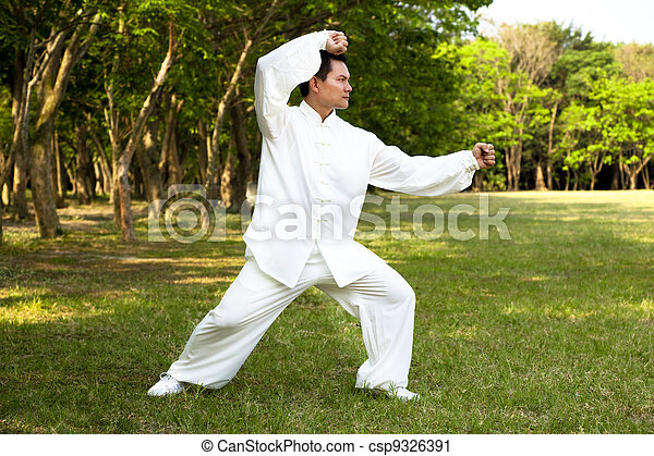 man and kung fu position - csp9326391