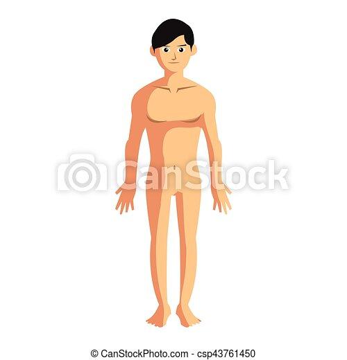 Man body anatomy illustration design.