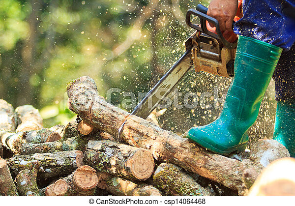 man cutting firewood for home with a chainsaw - csp14064468