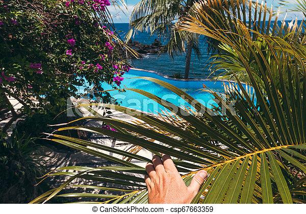 Man hand on a tropical swimming pool background. Dream island. Luxury  resort. Bali island, Indonesia.