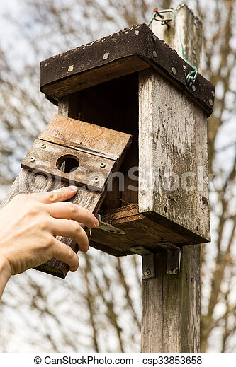 man is opening a birdhouse - csp33853658