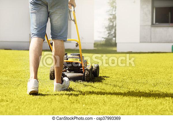Man mowing the grass - csp37993369
