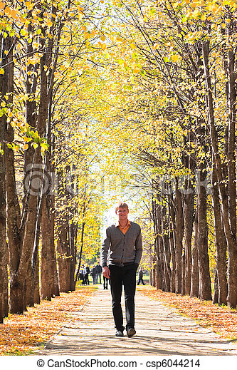 man on alley in fall forest man walking quietly on alley in stock photo search photographs. Black Bedroom Furniture Sets. Home Design Ideas