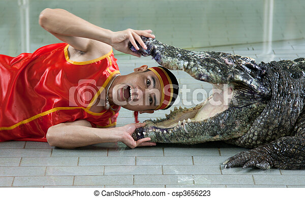 Man places head in mouth crocodile - csp3656223