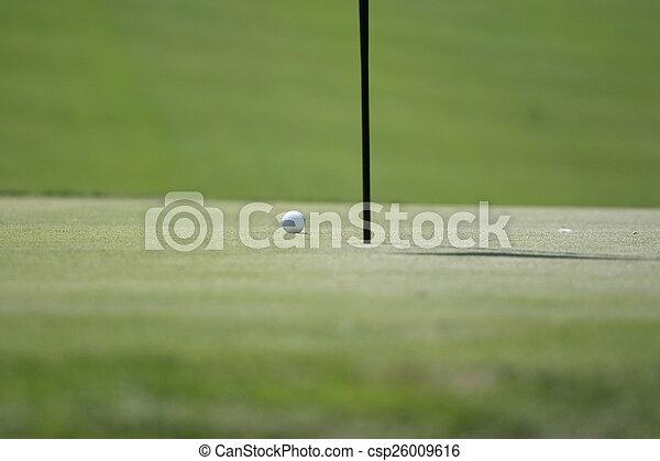 Man putting on the golf green - csp26009616