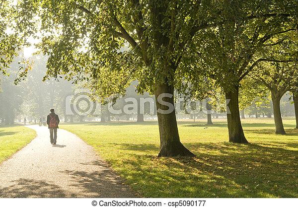 man walking in the park - csp5090177