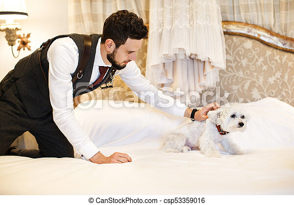 Man with cute white dog. wedding dress hanging on the bed in ...