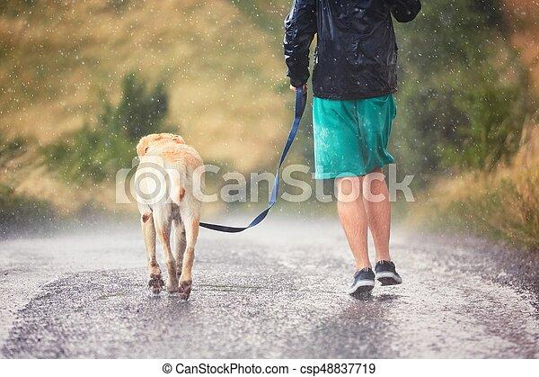 Man with dog in heavy rain - csp48837719