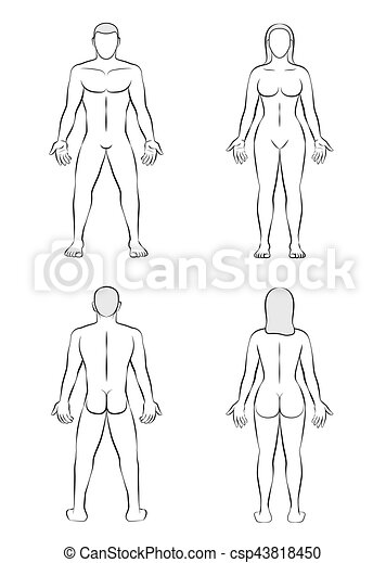 man woman body blank outline illustration  man and woman