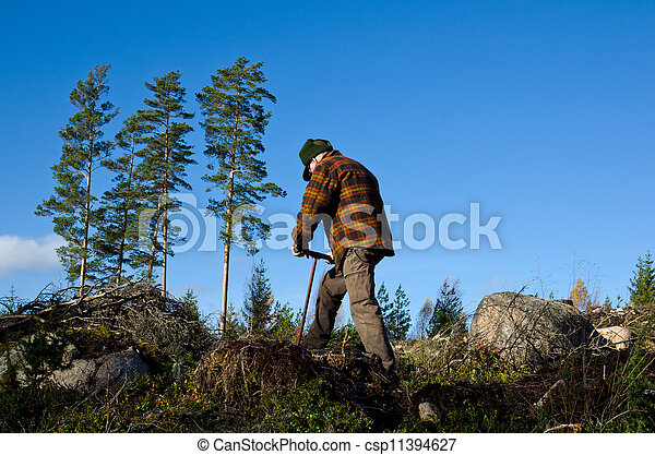 Man working with tree planting - csp11394627