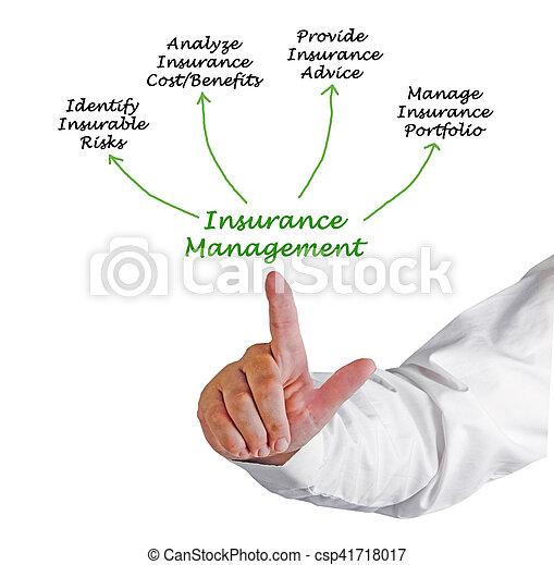 management, verzekering - csp41718017