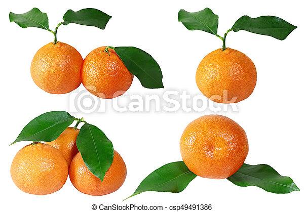 Mandarina cfb7acaa7c36