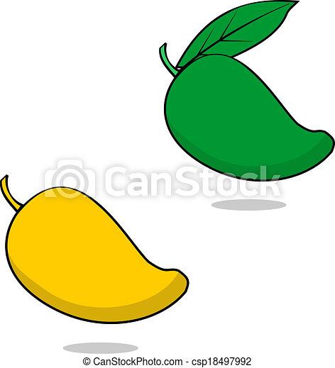 Mango. Illustration of a ripe and unripe philippine mango.