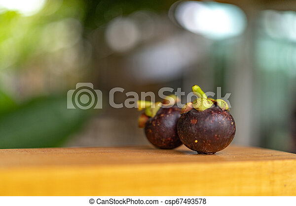 Mangosteen on the wooden plate, with blur bokeh green nature background. - csp67493578