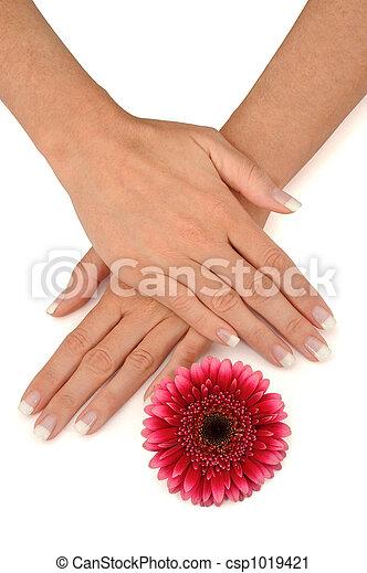 manicure - csp1019421