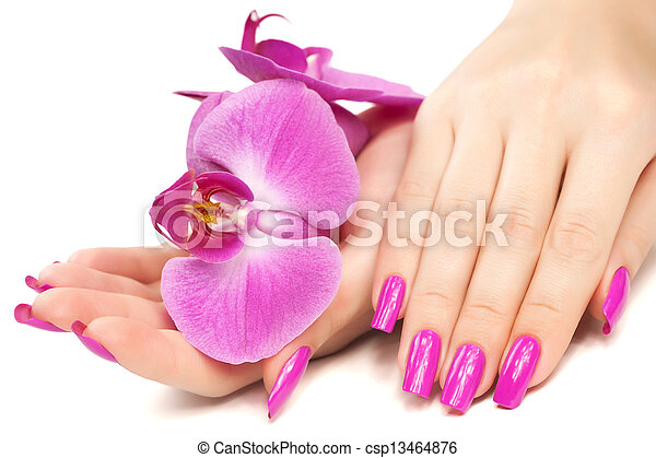 manicure with orchid flower. isolated - csp13464876