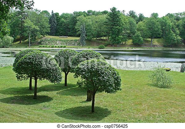 Manicured Trees - csp0756425