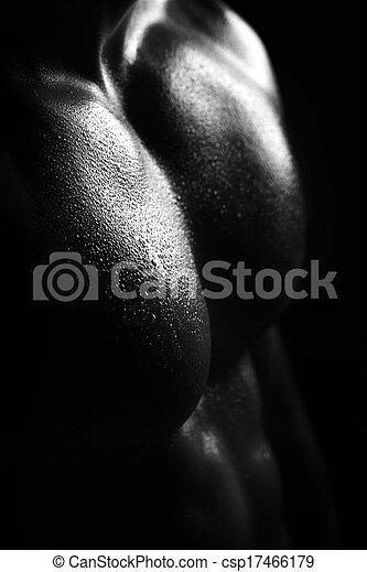 mannelijke , closeup, torso - csp17466179